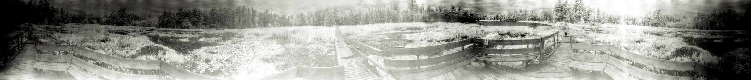 """""""Viewing Platform At the Center of a Bog"""" from the series Footprints, by William Mokrynski"""