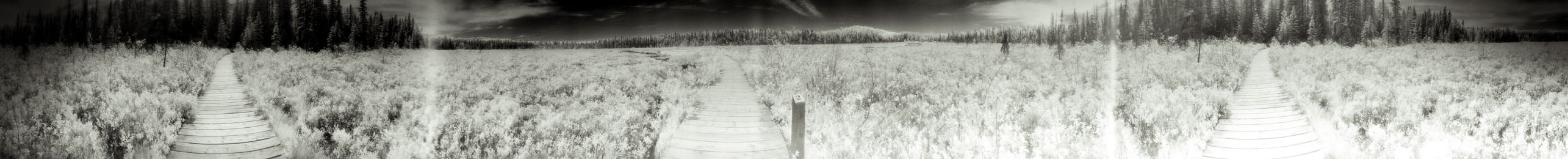 """""""Pathway 2"""" from the series Footprints, by William Mokrynski"""