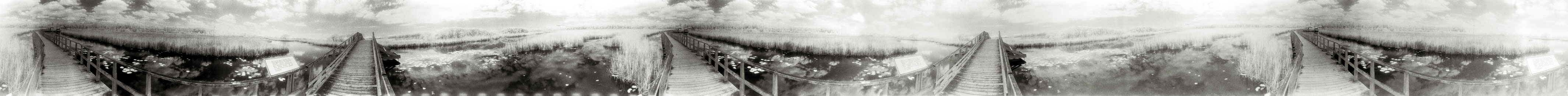 """""""Elevated Marsh Walkway"""" from the series Footprints, by William Mokrynski"""