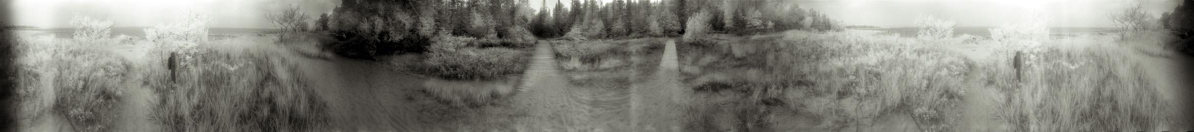 """Dune Boardwalk"" from the series Footprints, by William Mokrynski"